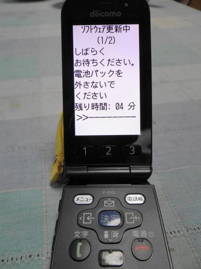 DSC08825.JPG